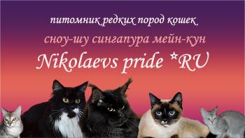 Nikolaevs pride*ru